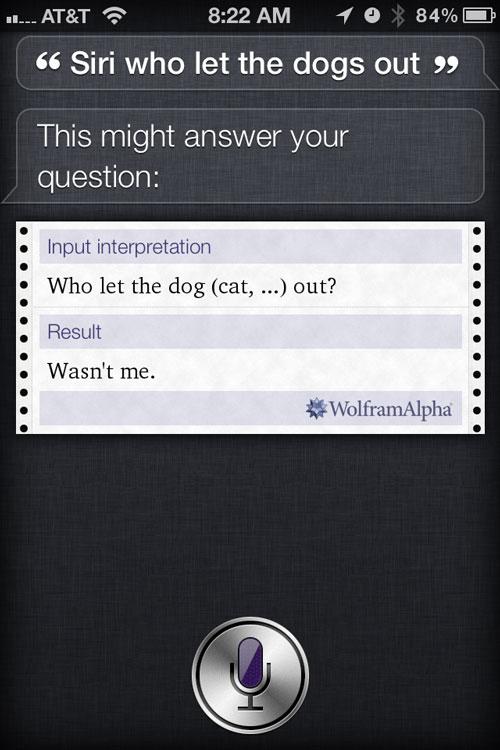 Siri response smart and witty