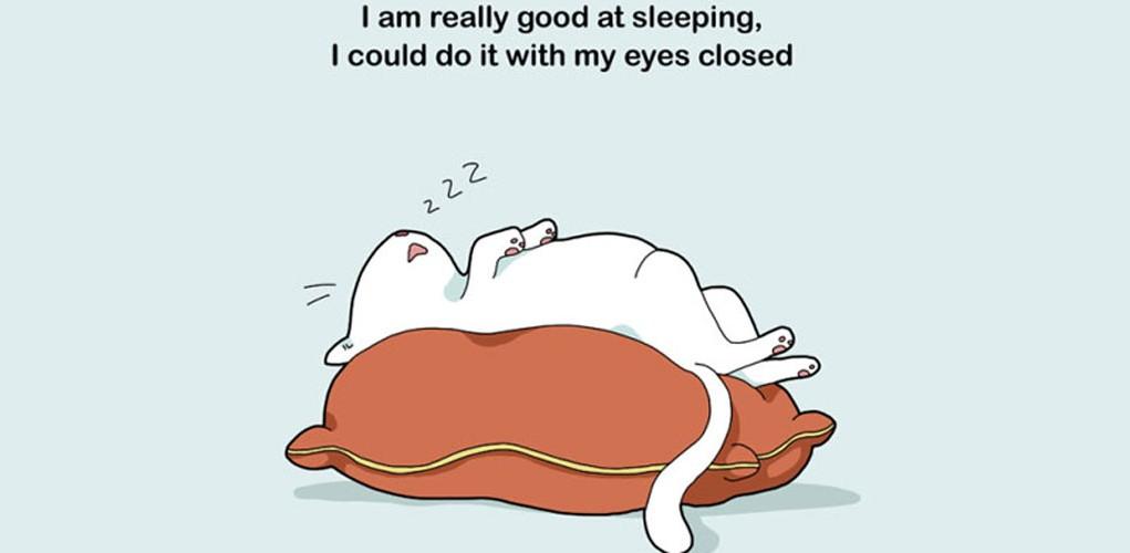 Clinomaniac People Who Love To Sleep