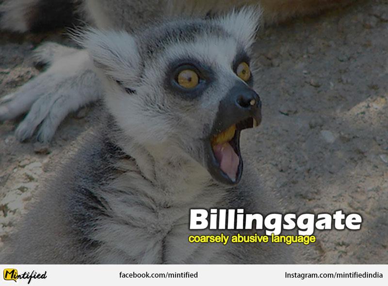 Crazy English Words Like Billingsgate