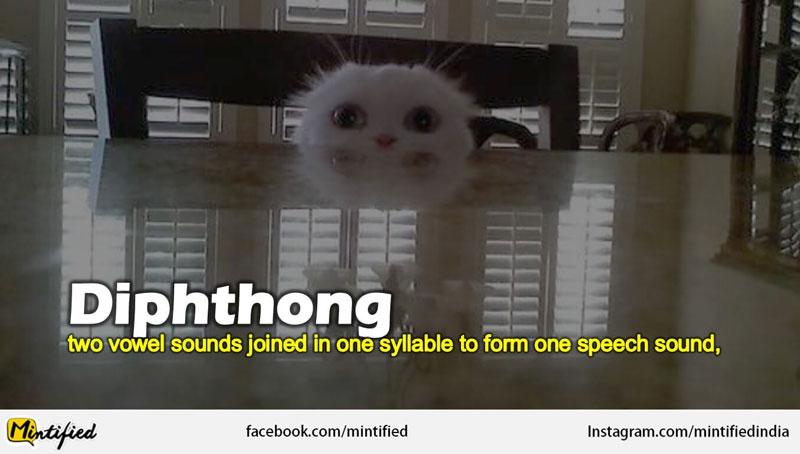 Words Like Diphthong