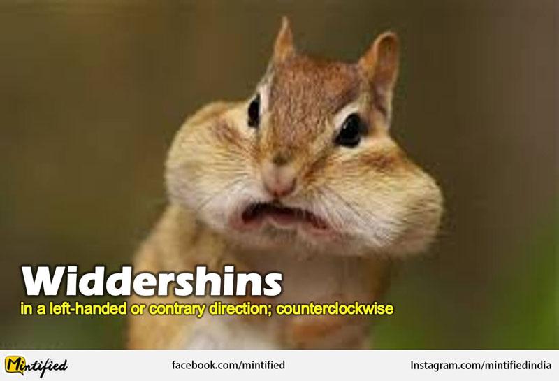 Weirds English words like widdershins