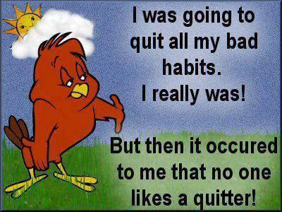 Hilarious Cartoons showing Philosophical birdie