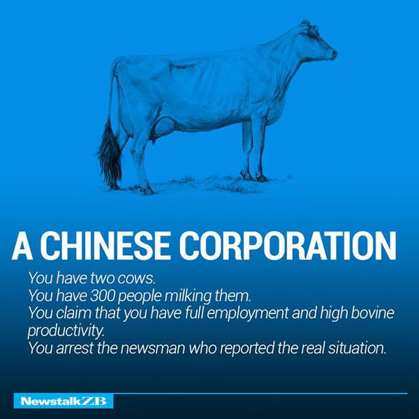 Ecownomics on chinese corporation