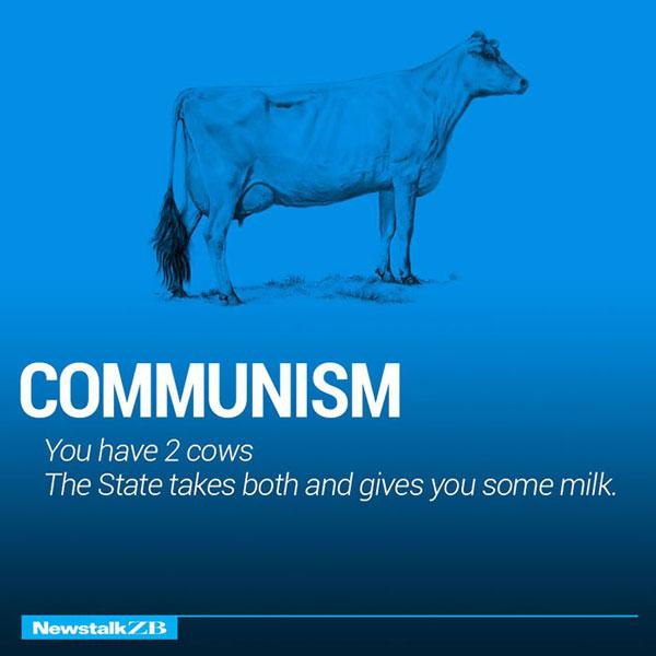 Two Cow Explaining Communism