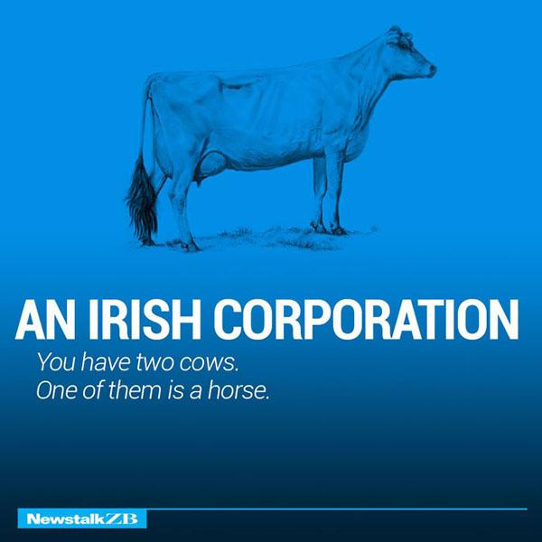 Irish Corporation Economic Study