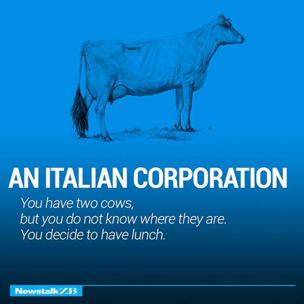 Two Cow Explaining Italian Corporation