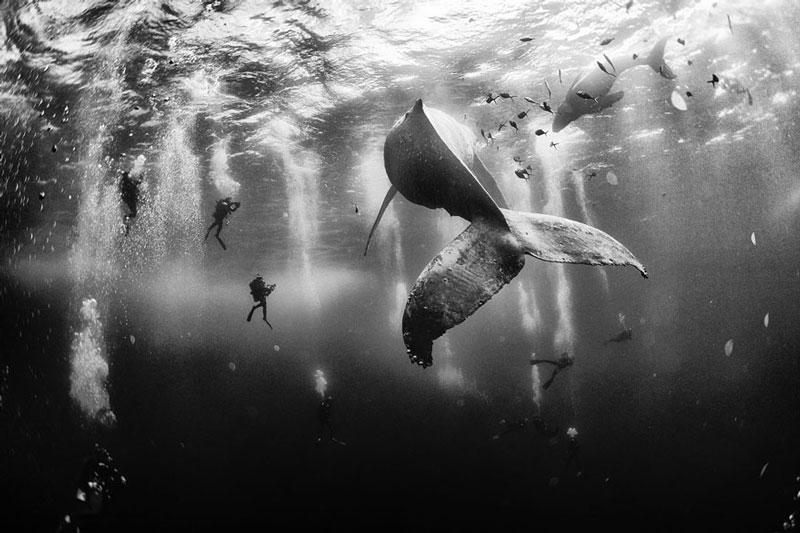 Anuar Patjane National Geographic Traveller Photo Contest Winner