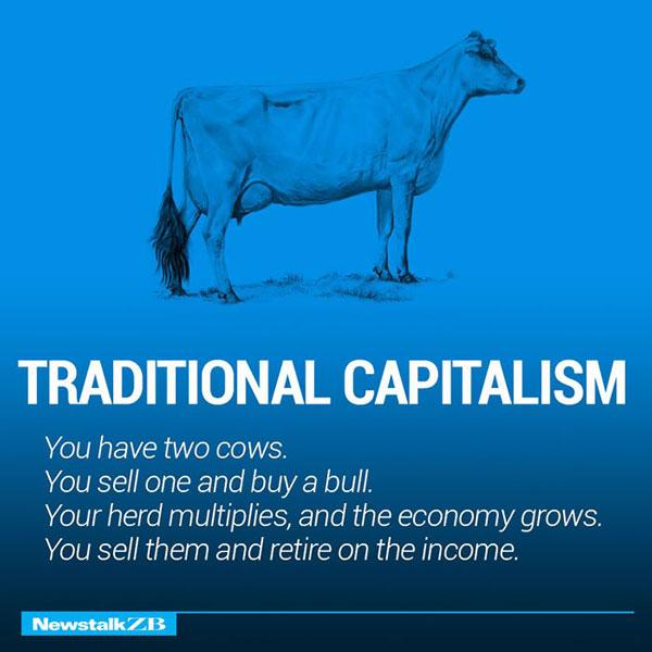 Traditional Capitalism Economic Study